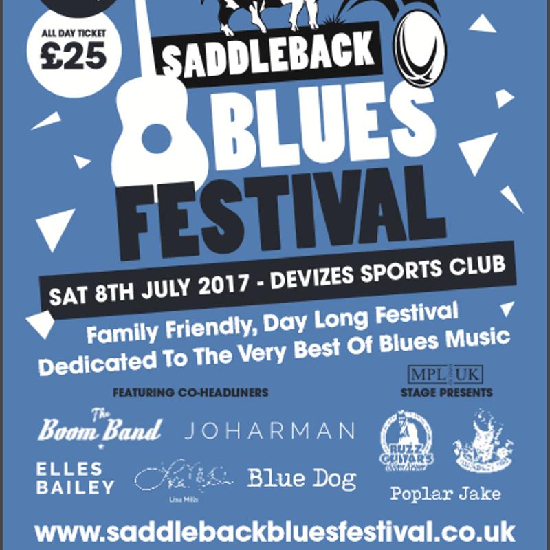 Saddlebacks Blues Festival