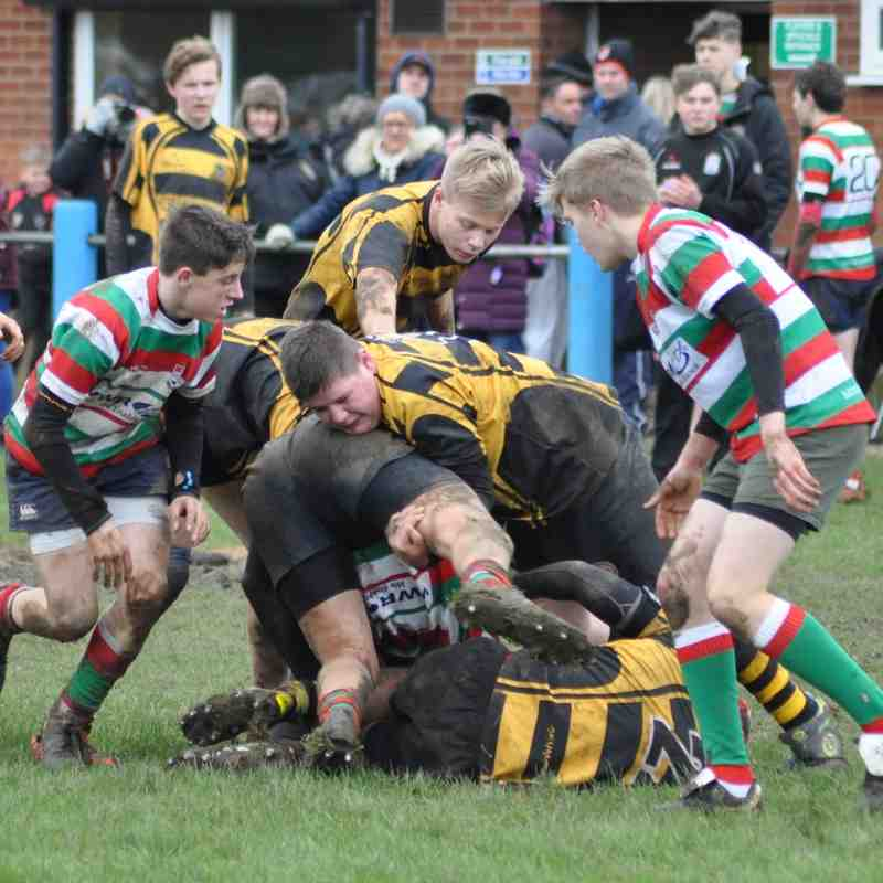 Lutterworth RFC U15s V Hinckley RFC U15s 24th Jan 2016