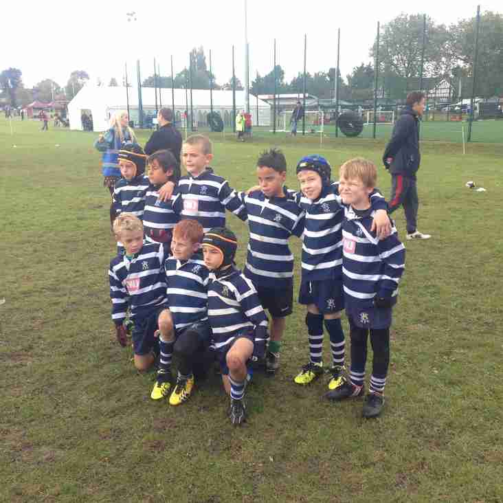 Blackheath Mini Rugby Festival Saturday 11th October 2014 - The Wolves A's - by Marc Barenbrug
