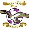 Gosport Falcons 8 - 0 Hayling St Andrews White