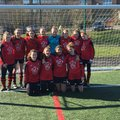 Under 15 Girls beat Southdown  2 - 0