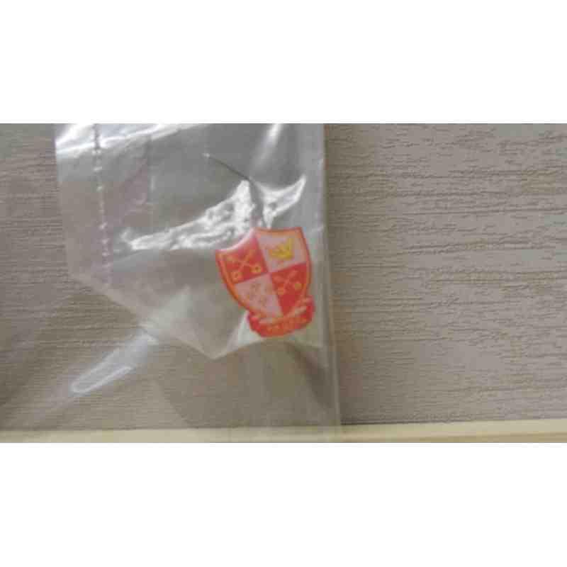 PRUFC lapel pin