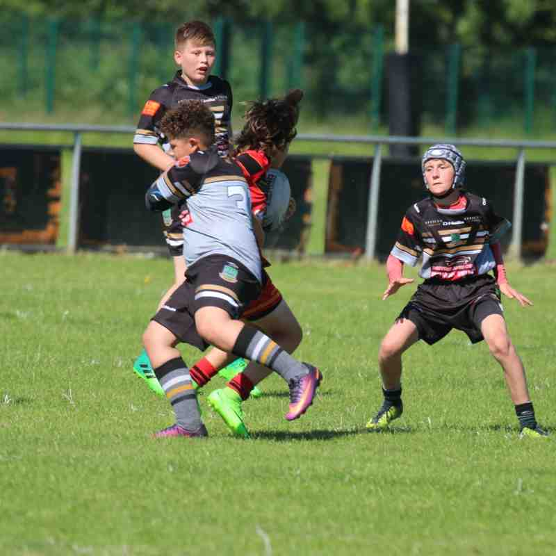 u11s v West Bank Bears 20-6-17