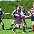 RUGBY IN UNION