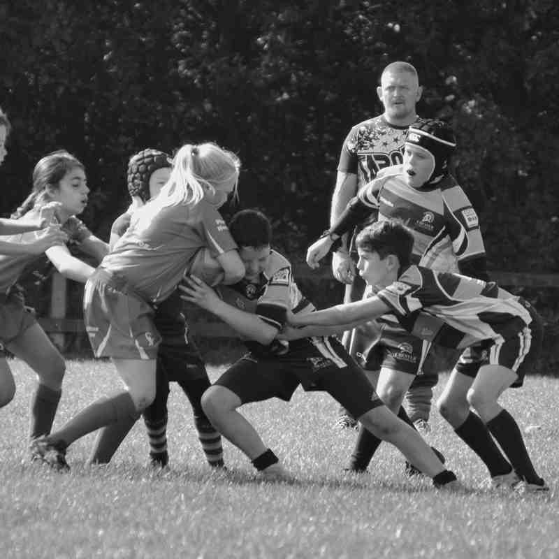 Chester Gladiators U11s v Aspull New Springs Lions
