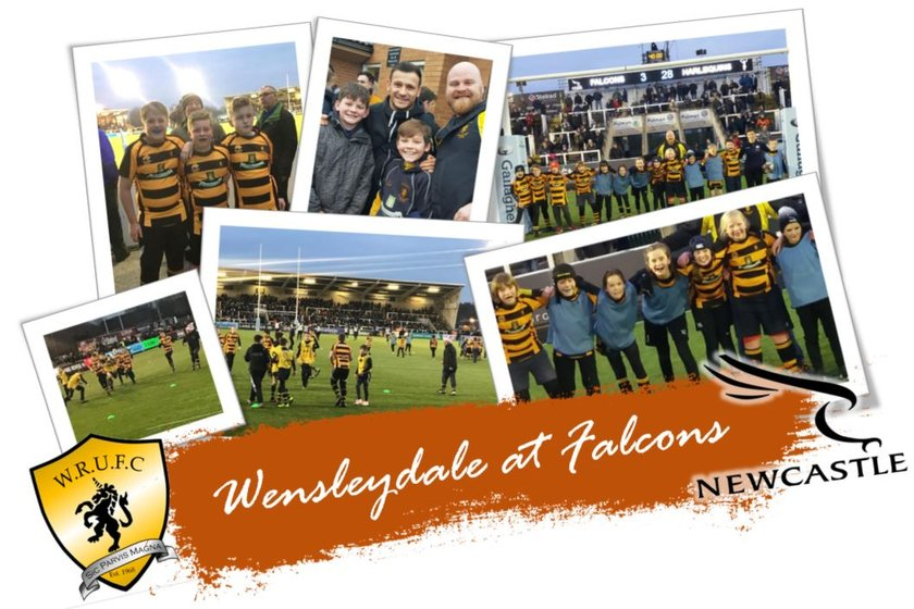 Wensleydale Juniors at Newcastle Falcons