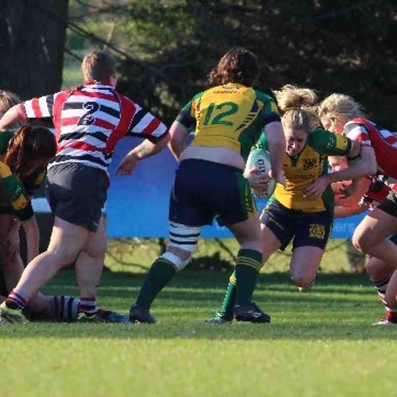 Ladies National cup semi-final Henley Hawks v Novos