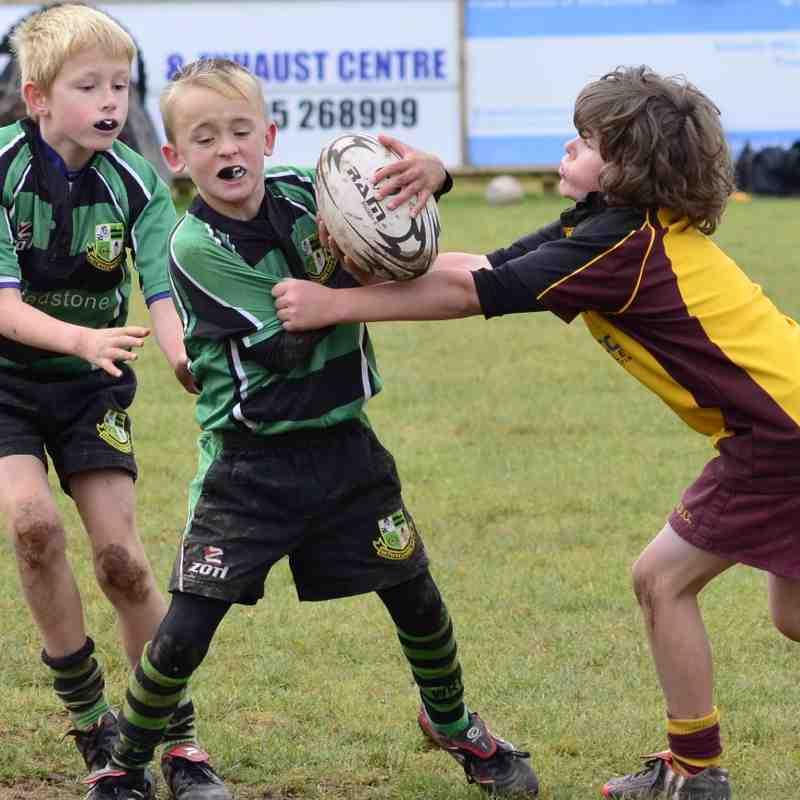 U9 Festival of Rugby - 12/10/14