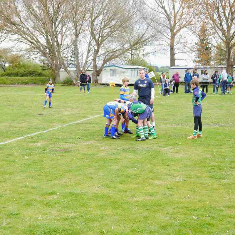Minehead Tigers challenge U10's 2015