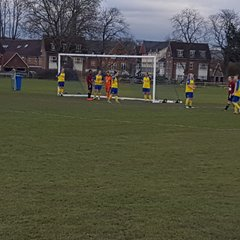 Parkwood vs Crawley Wasps