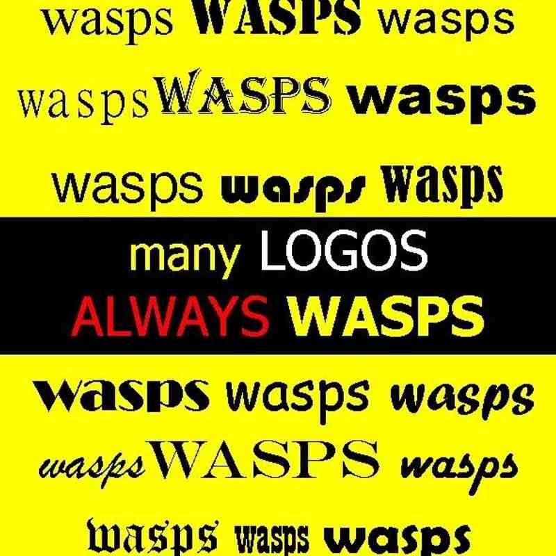 Wasps FC : many Logos - always Wasps !