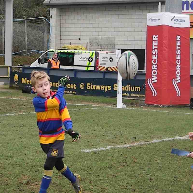 Under 8's at Worcester Warriors
