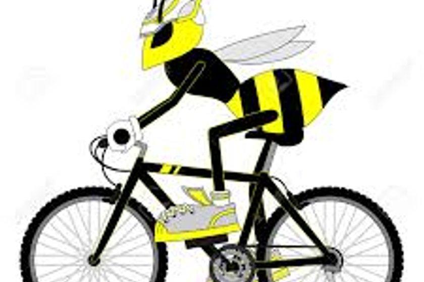 Wasps FC to Wasps - 6th May 2017