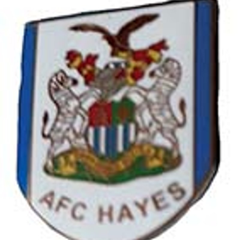AFC Hayes  Lapel Badges