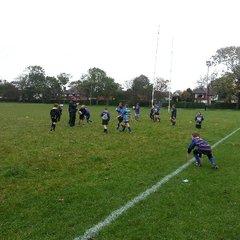 London Irish Rugby Camp