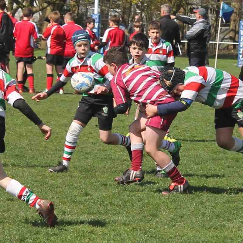 Wirral U11's Cheshire Cup - Apr 2016