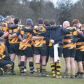 1st XV lose to Maldon RFC 39 - 0