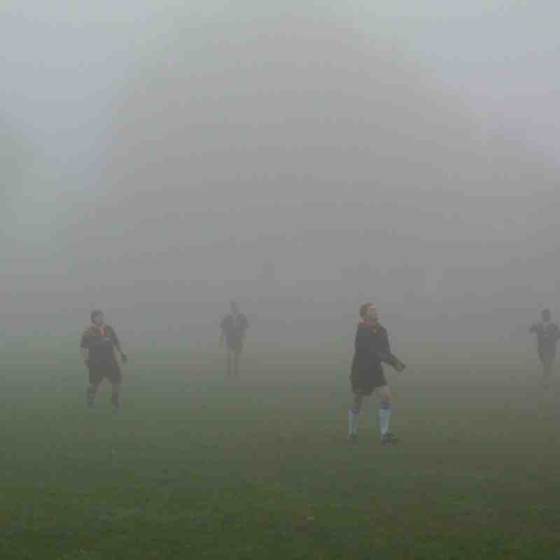 Tigers In the mist @ Battersea Ironsides