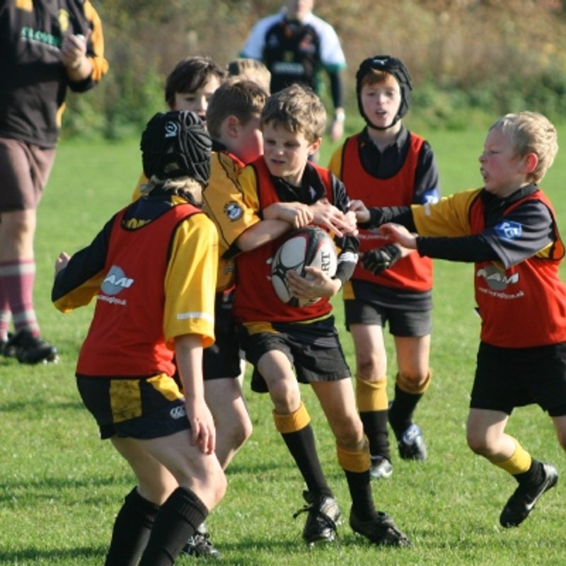 Minis Membership Forms for 2017/18