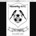 Holsworthy FC v Elmore FC