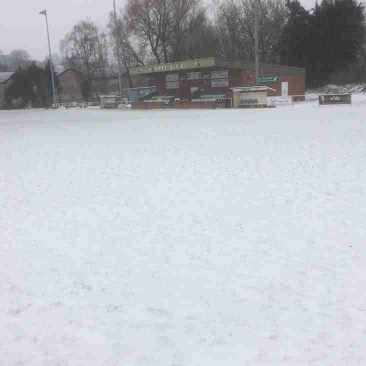 Snowy Horsdon Park...