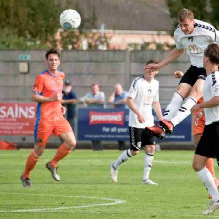 Marc McGregor's Five-Star Seagulls Finding Their Wings