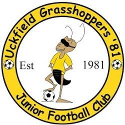 Uckfield Grasshoppers '81