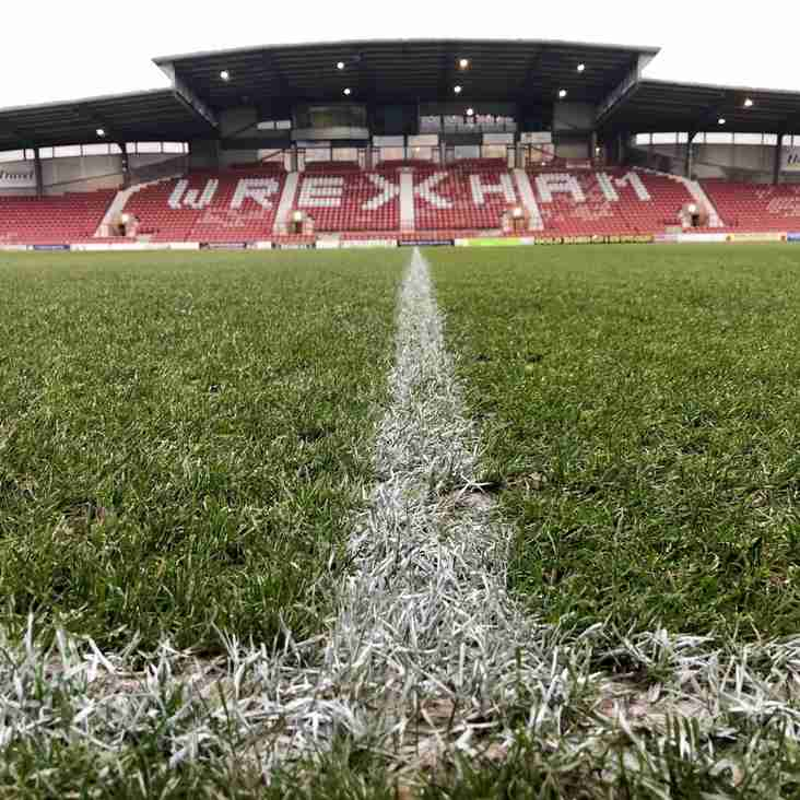 Wales Return To The Racecourse After A Decade Away