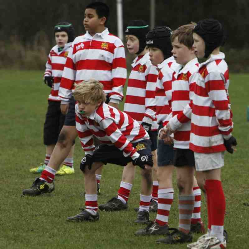 U9's Harrow and Hackney Bulls 08.01.2012