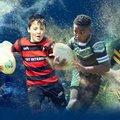Ipswich Mini Rugby Festival