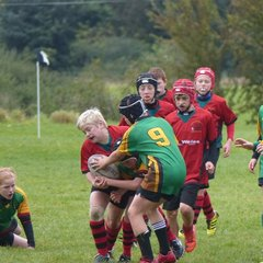 Newtown at the Welshpool U12 Festival by Gary Williams