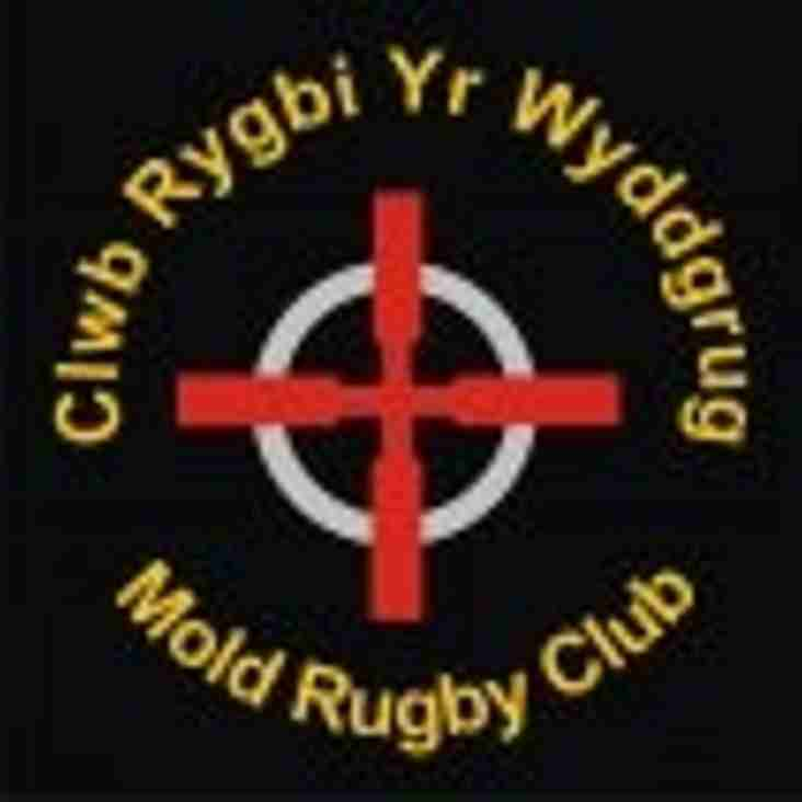 Mold prepare for Mega Minis Festival of Rugby on Sunday