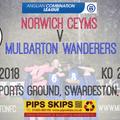 Norwich CEYMS vs. Mulbarton Wanderers