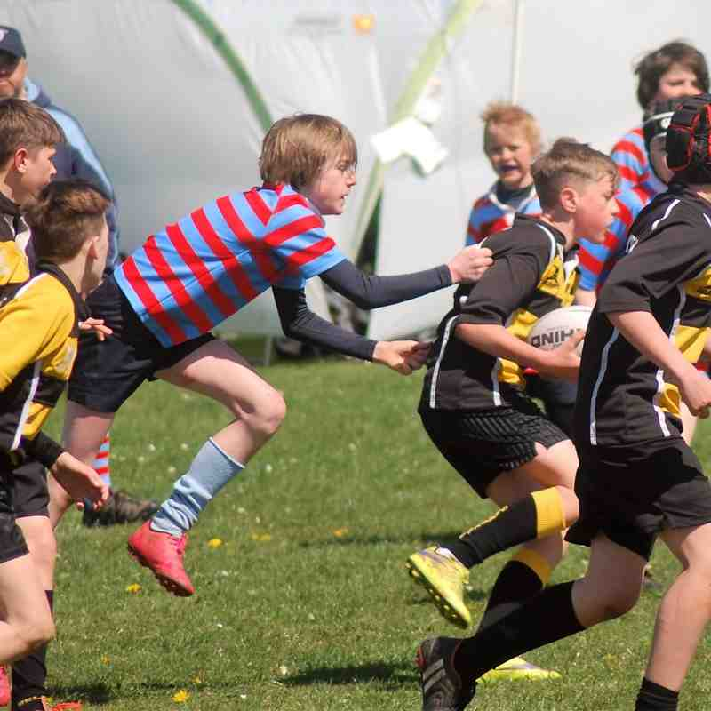 YRFC U12s Cheddar Tournament 2016