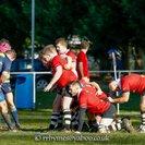 Match Report - Old Centralians 37-33 Chippenham