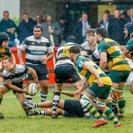 Chippenham RFC 1stXV 26-26 Beaconsfield RFC 1stXV