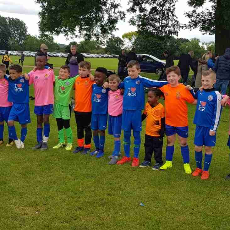 Wealdstone Under 8s Reach The Nationals