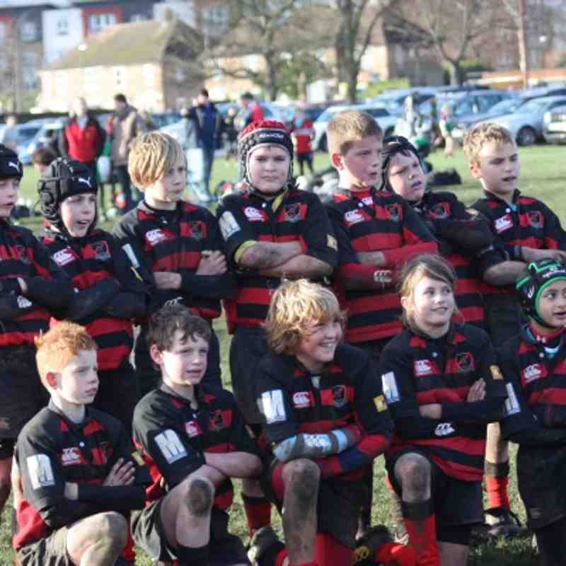 U10 Harlequins Pool winners