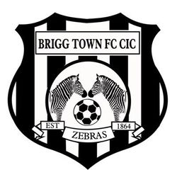 Brigg Town CIC