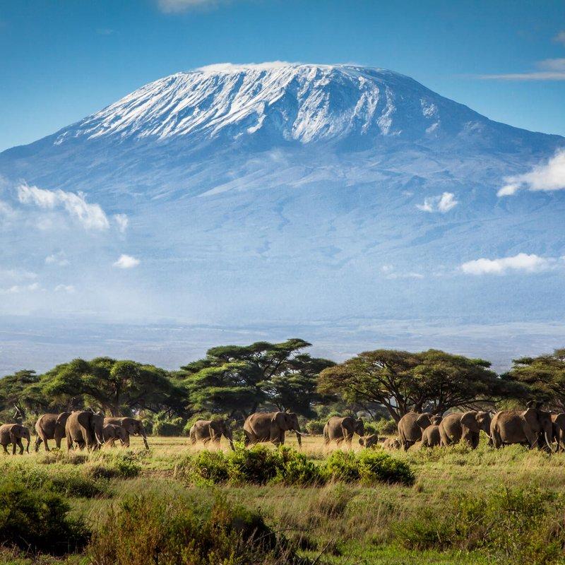 MPE To Climb Kilimanjaro