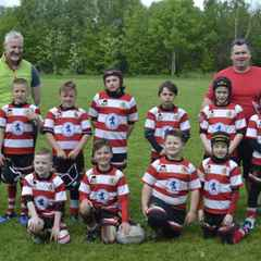 Match Report - 8s Lions 9 - Wigan St Cuthberts 9