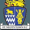 Cambridge City FC vs. St Neots Town