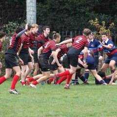 U16's v Sarries