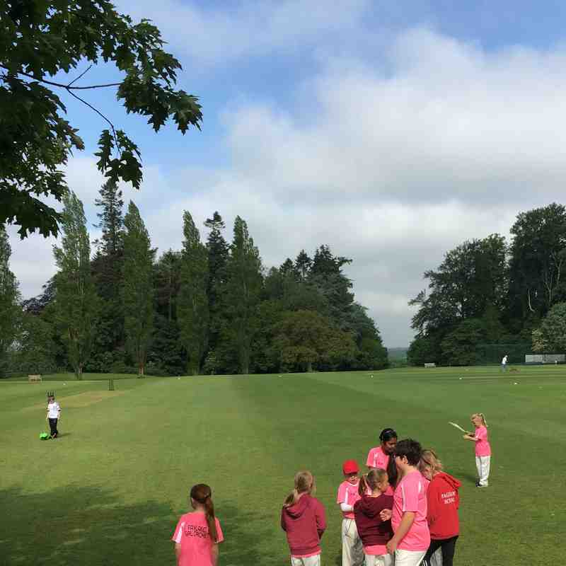 Junior Girls Cricket
