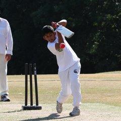 Disability Cricket