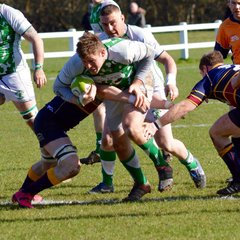 Horsham 1st XV v Old Colfeians - March 2017