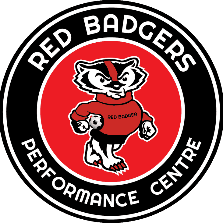 Eastwood CFC launch new Red Badgers logo