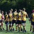 Sudbury vs. Bury St Edmunds RUFC