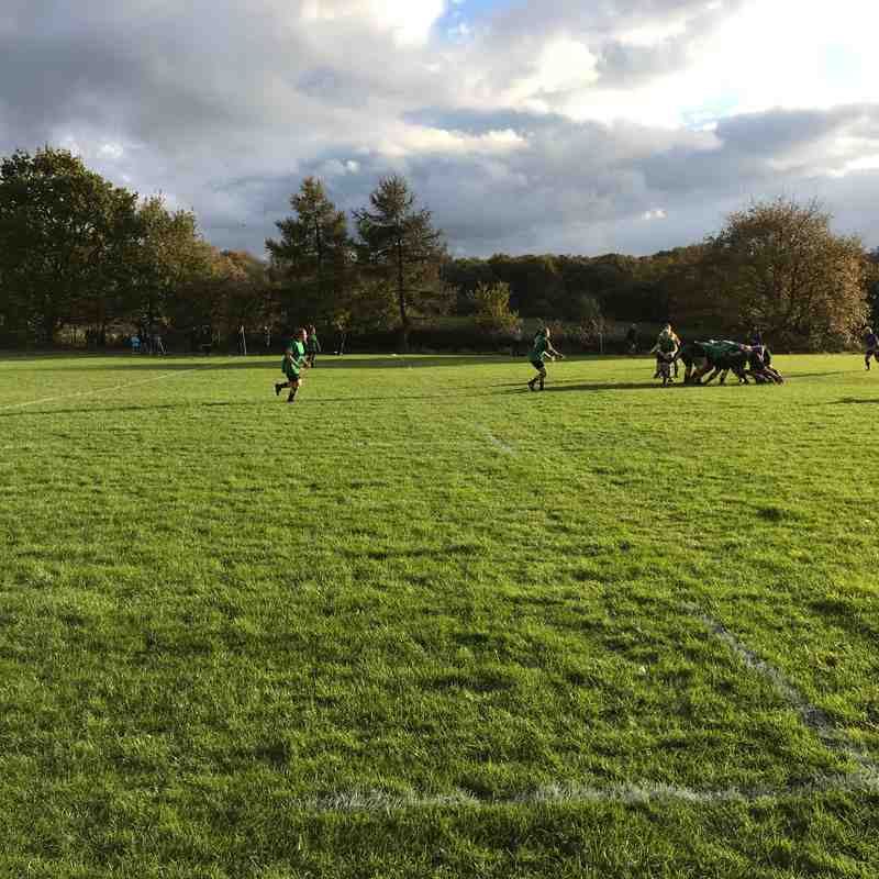 Old Cats Vs  Bracknell Ladies 04/11/2017