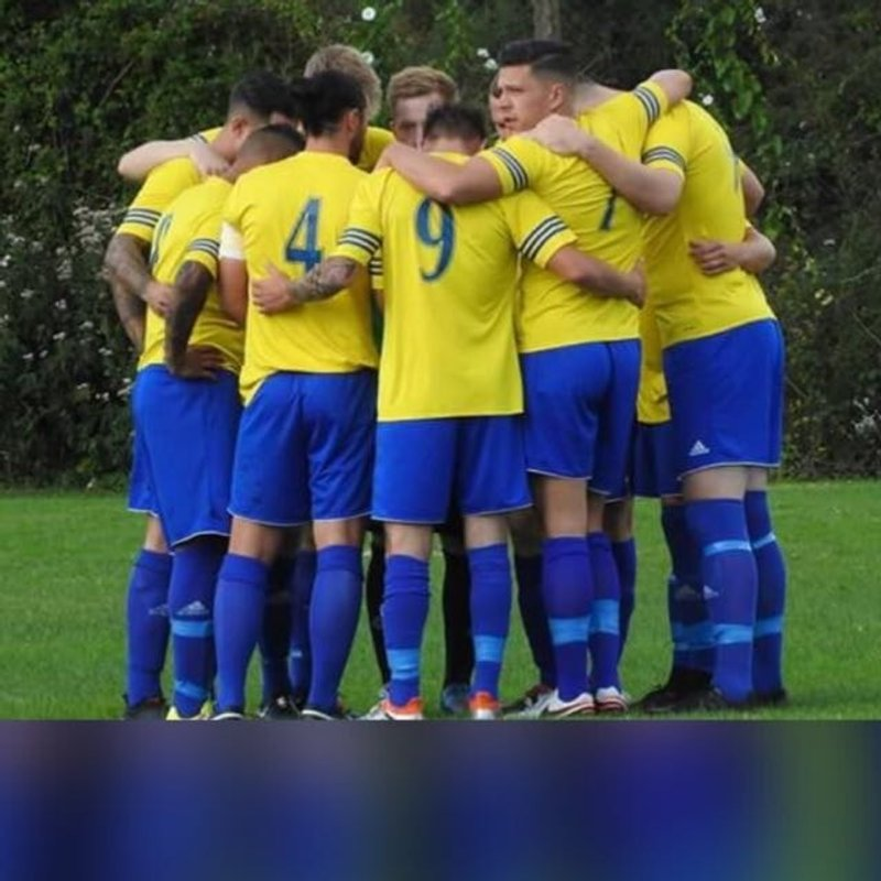 Lions Thrash Stockbridge